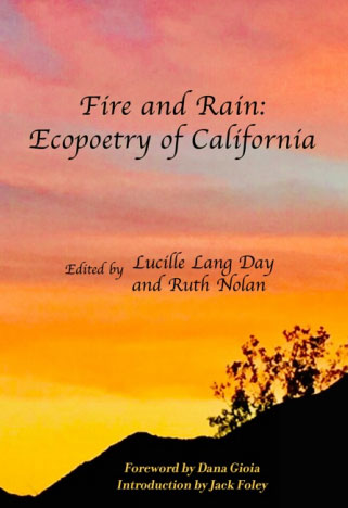 Fire and Rain book cover